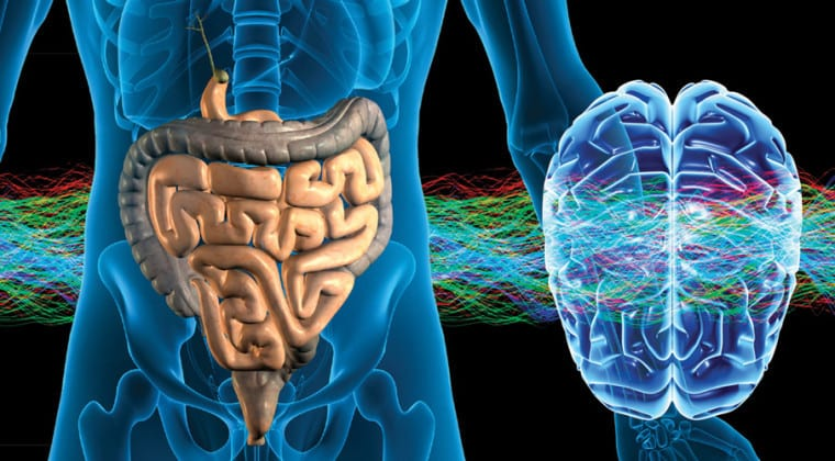 brain-gut-connection-760x420